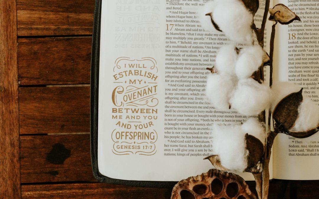 Men's Bible Study – Genesis Part I